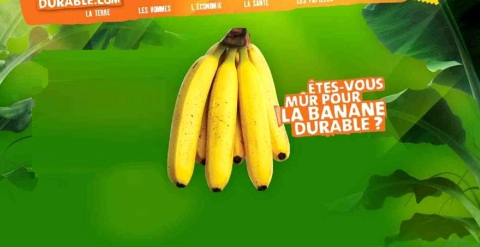 banane01