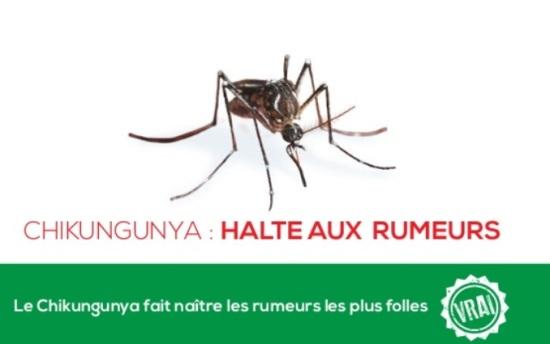 chikungunya_rumeurs_ars