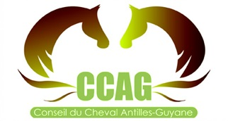 logo_ccag_01
